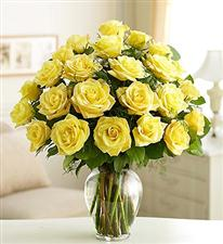 25 yellow roses.